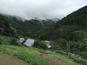 クールな避暑地「東京檜原村」にいらっしゃい!